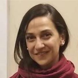 Ava Zandi. Ph.D.– Tutor